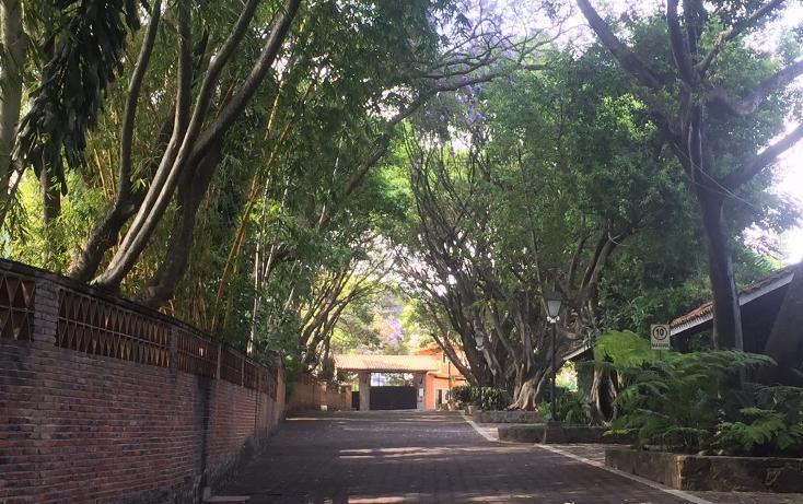 Foto de terreno habitacional en venta en  , la carolina, cuernavaca, morelos, 1801031 No. 12
