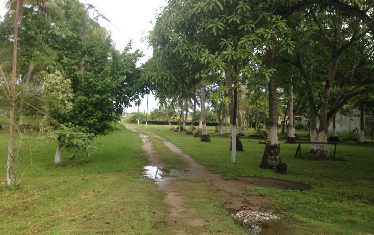 Foto de terreno comercial en venta en  , la ceiba, paraíso, tabasco, 1241645 No. 03