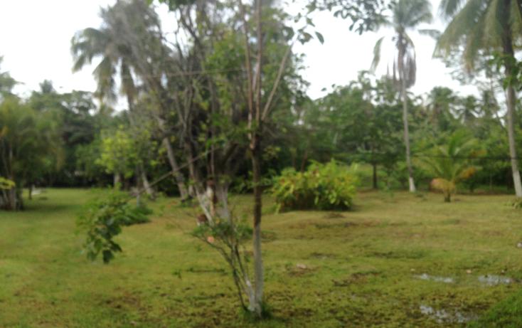 Foto de terreno comercial en venta en  , la ceiba, paraíso, tabasco, 1241645 No. 04