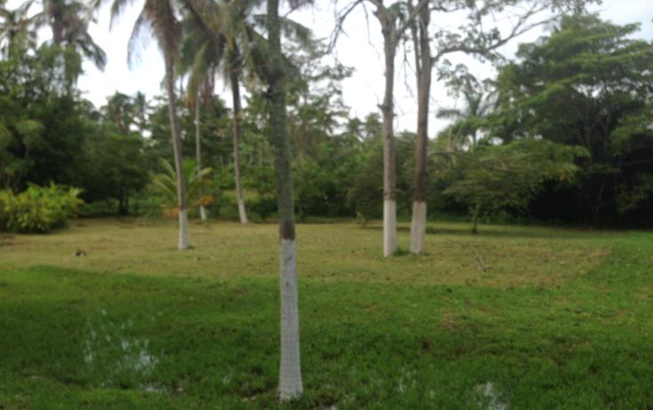 Foto de terreno comercial en venta en  , la ceiba, paraíso, tabasco, 1241645 No. 05
