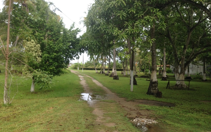 Foto de terreno comercial en venta en  , la ceiba, paraíso, tabasco, 1258573 No. 02