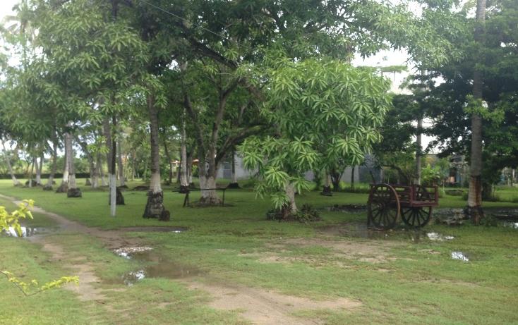 Foto de terreno comercial en venta en  , la ceiba, paraíso, tabasco, 1258573 No. 03