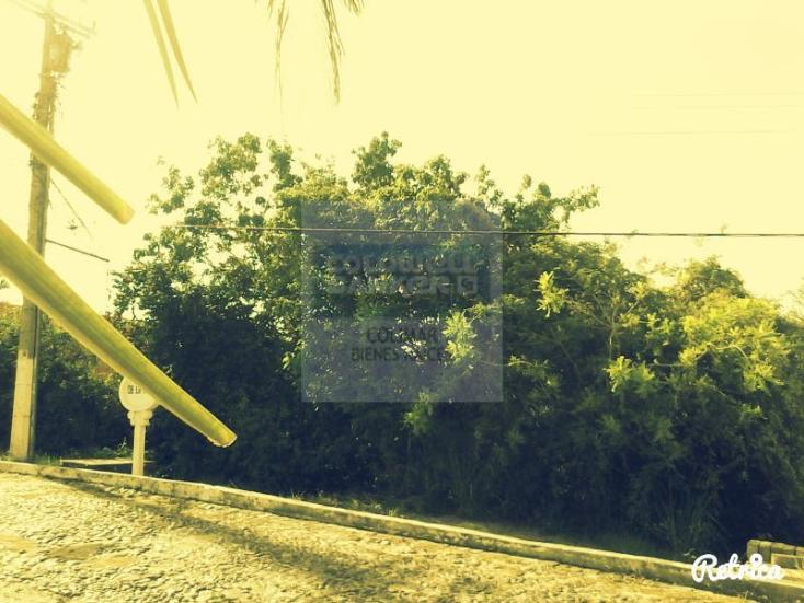 Foto de terreno habitacional en venta en  27, península de santiago, manzanillo, colima, 1653123 No. 04