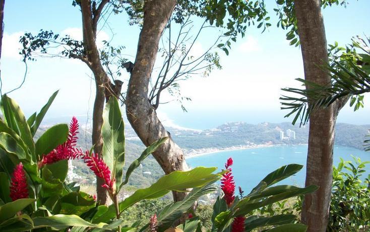Foto de casa en renta en  , la cima, acapulco de ju?rez, guerrero, 1407263 No. 42