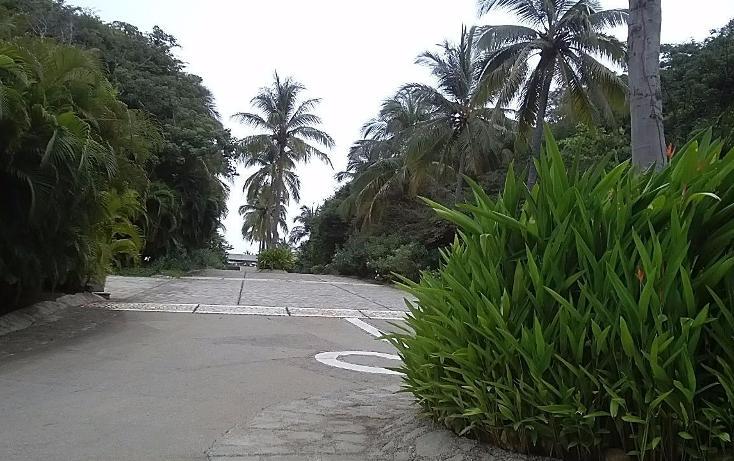 Foto de terreno habitacional en venta en  , la cima, acapulco de juárez, guerrero, 3424717 No. 12