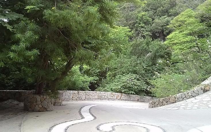 Foto de terreno habitacional en venta en  , la cima, acapulco de juárez, guerrero, 3424717 No. 18