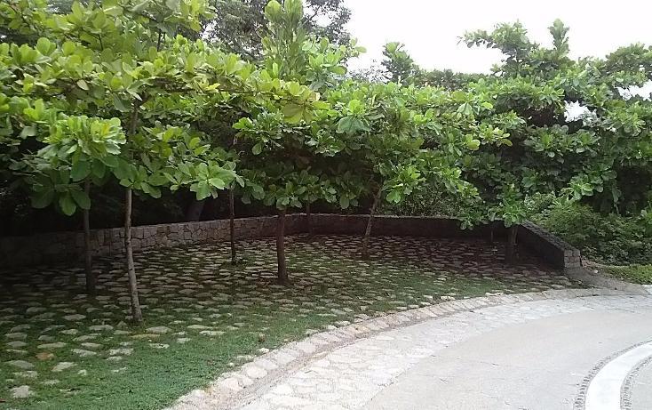 Foto de terreno habitacional en venta en  , la cima, acapulco de juárez, guerrero, 3424717 No. 19