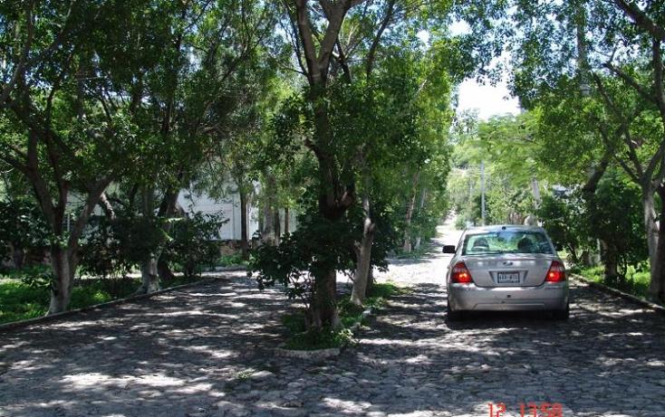 Foto de terreno habitacional en venta en  , la cima, tlaltizap?n de zapata, morelos, 2010056 No. 02
