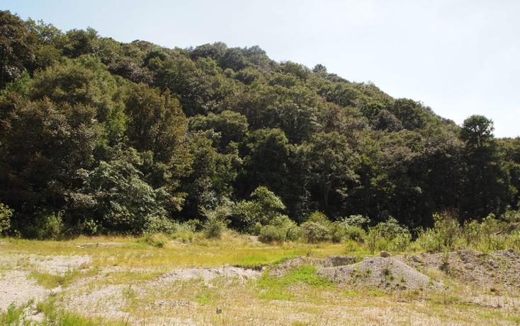 Foto de terreno comercial en venta en  , la concepci?n, nicol?s romero, m?xico, 1507231 No. 04