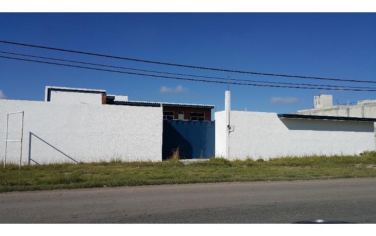 Foto de edificio en renta en  , la concepci?n, san agust?n tlaxiaca, hidalgo, 1355631 No. 07