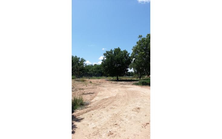 Foto de terreno comercial en venta en  , la concepci?n, san juan del r?o, quer?taro, 1289779 No. 05