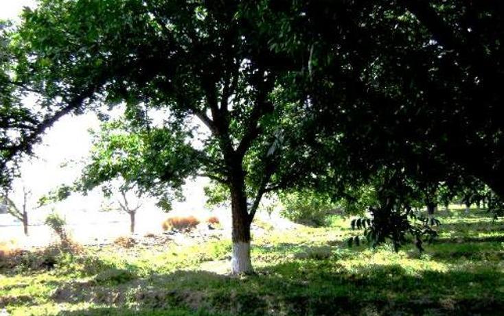 Foto de terreno comercial en venta en  , la concha, torreón, coahuila de zaragoza, 399824 No. 03