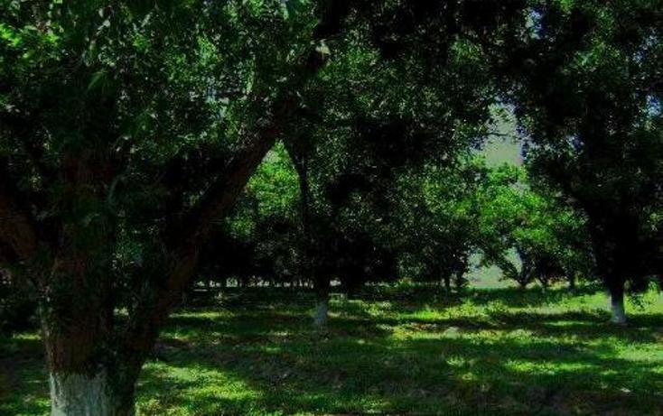 Foto de terreno comercial en venta en  , la concha, torreón, coahuila de zaragoza, 399824 No. 05