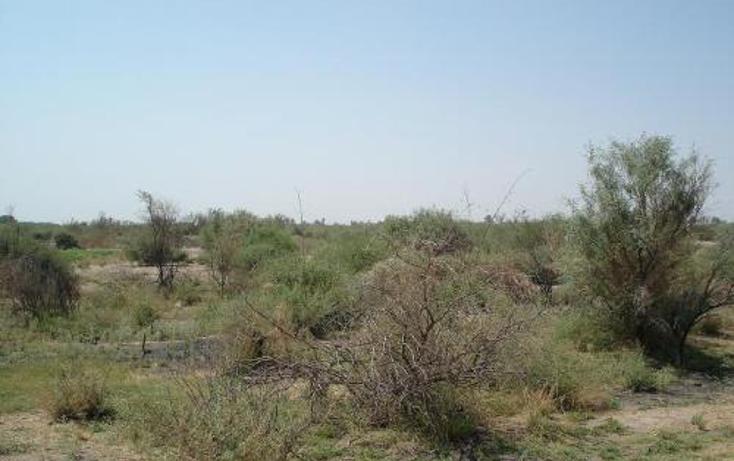 Foto de terreno comercial en venta en  , la concha, torre?n, coahuila de zaragoza, 400750 No. 02