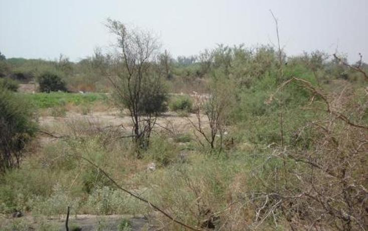 Foto de terreno comercial en venta en  , la concha, torre?n, coahuila de zaragoza, 400750 No. 03