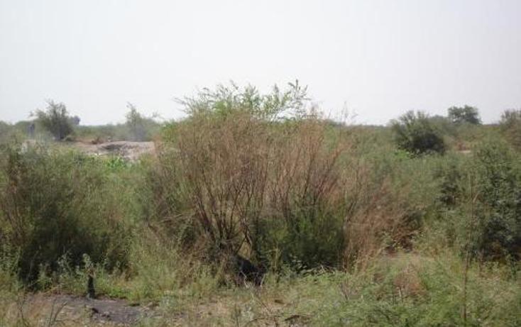 Foto de terreno comercial en venta en  , la concha, torre?n, coahuila de zaragoza, 400750 No. 06