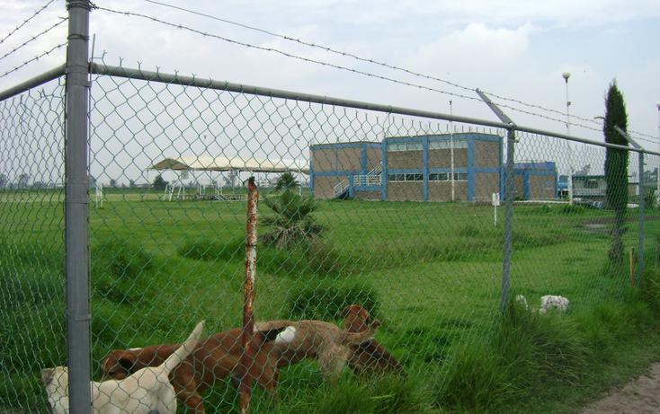 Foto de terreno habitacional en venta en  , la conchita, chalco, m?xico, 1192133 No. 06
