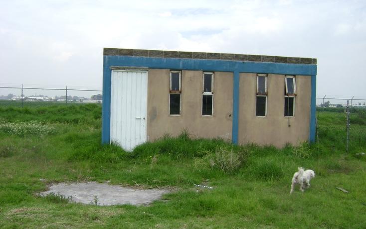 Foto de terreno habitacional en venta en  , la conchita, chalco, m?xico, 1192133 No. 29