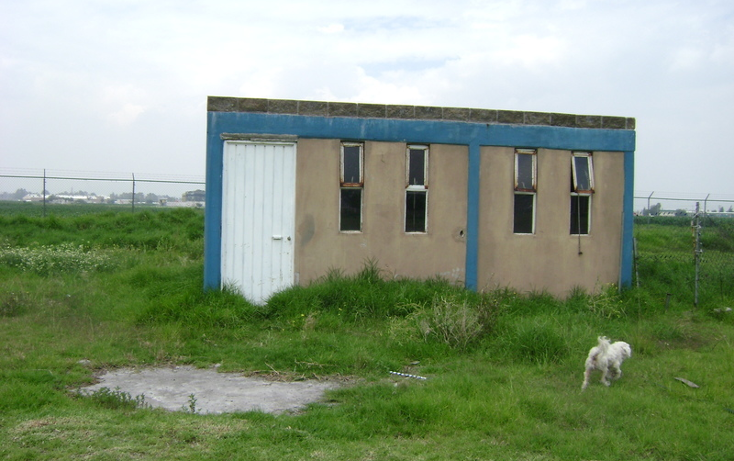 Foto de terreno habitacional en renta en  , la conchita, chalco, m?xico, 1192141 No. 30