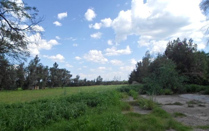 Foto de terreno comercial en venta en  , la cotorra, aguascalientes, aguascalientes, 2625639 No. 02