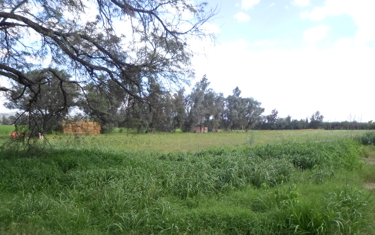 Foto de terreno comercial en venta en  , la cotorra, aguascalientes, aguascalientes, 2625639 No. 03