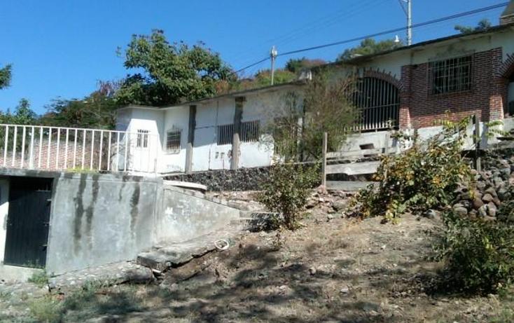 Foto de terreno habitacional en venta en  , la cruz, xochitepec, morelos, 1271785 No. 04