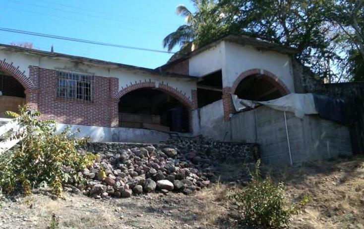 Foto de terreno habitacional en venta en  , la cruz, xochitepec, morelos, 1271785 No. 05