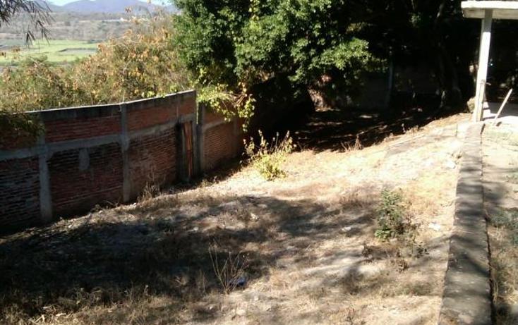 Foto de terreno habitacional en venta en  , la cruz, xochitepec, morelos, 1271785 No. 07