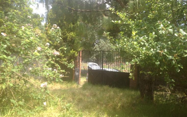 Foto de casa en venta en  , la escondida, tlalmanalco, m?xico, 1940299 No. 03