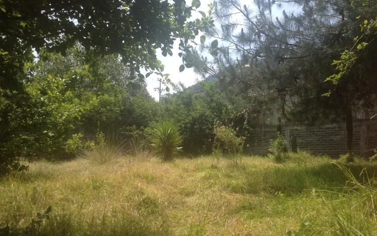 Foto de casa en venta en  , la escondida, tlalmanalco, m?xico, 1940299 No. 04