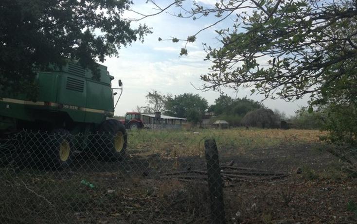 Foto de terreno comercial en venta en  , la esperanza, altamira, tamaulipas, 1162343 No. 04