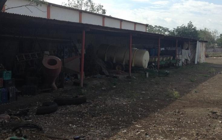 Foto de nave industrial en venta en  , la esperanza, altamira, tamaulipas, 1736506 No. 01