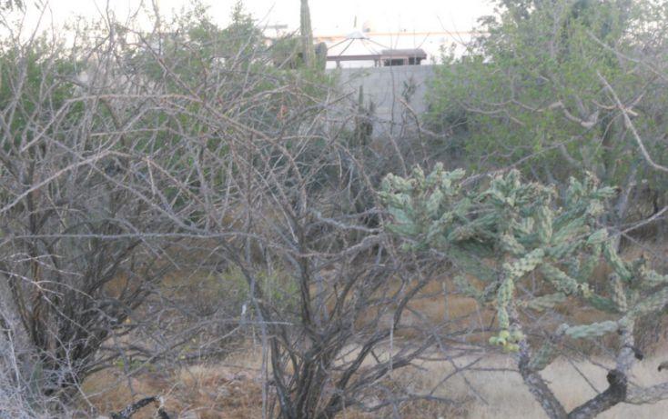 Foto de terreno habitacional en venta en, la esperanza, la paz, baja california sur, 1096909 no 04