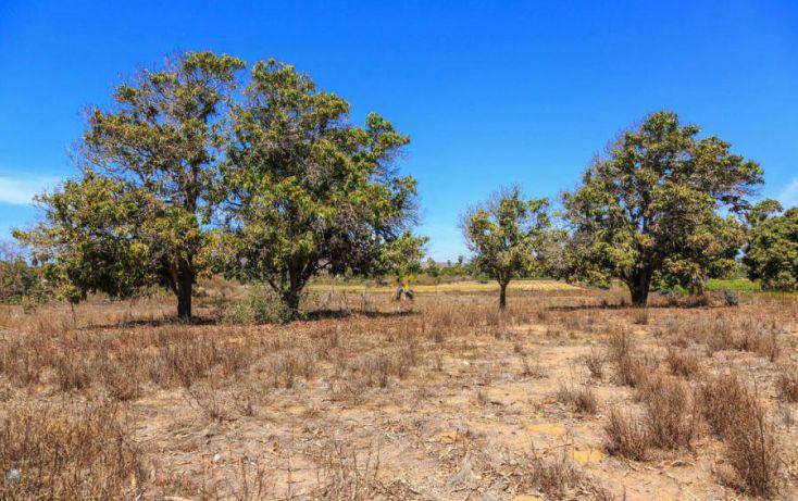Foto de terreno habitacional en venta en, la esperanza, la paz, baja california sur, 1112833 no 04