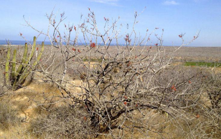 Foto de terreno habitacional en venta en, la esperanza, la paz, baja california sur, 1124375 no 06