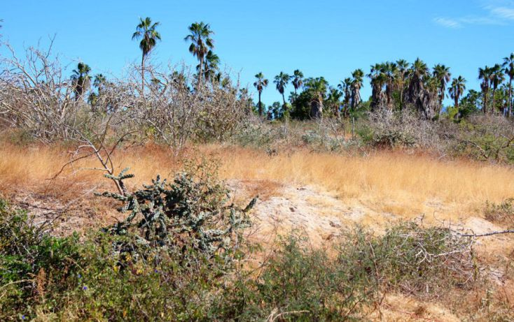 Foto de terreno habitacional en venta en, la esperanza, la paz, baja california sur, 1176169 no 06