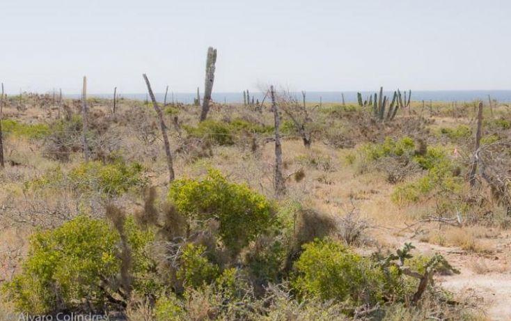 Foto de terreno habitacional en venta en, la esperanza, la paz, baja california sur, 1282119 no 06