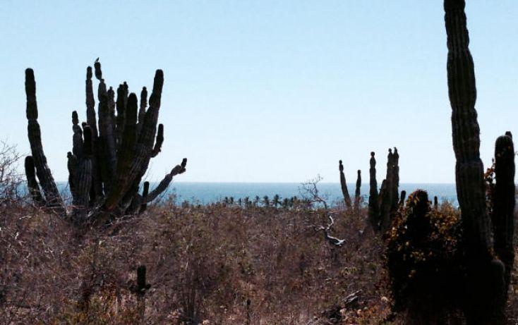 Foto de terreno habitacional en venta en, la esperanza, la paz, baja california sur, 1295055 no 06