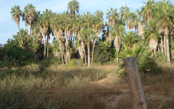 Foto de terreno habitacional en venta en, la esperanza, la paz, baja california sur, 1610756 no 02