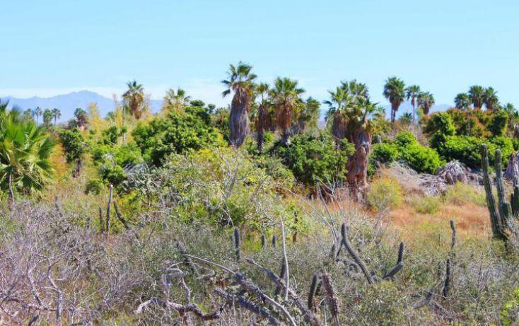 Foto de terreno habitacional en venta en, la esperanza, la paz, baja california sur, 1738426 no 05