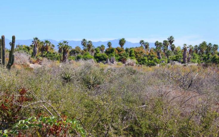Foto de terreno habitacional en venta en, la esperanza, la paz, baja california sur, 1738426 no 16