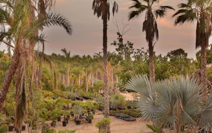 Foto de terreno habitacional en venta en, la esperanza, la paz, baja california sur, 1746782 no 03