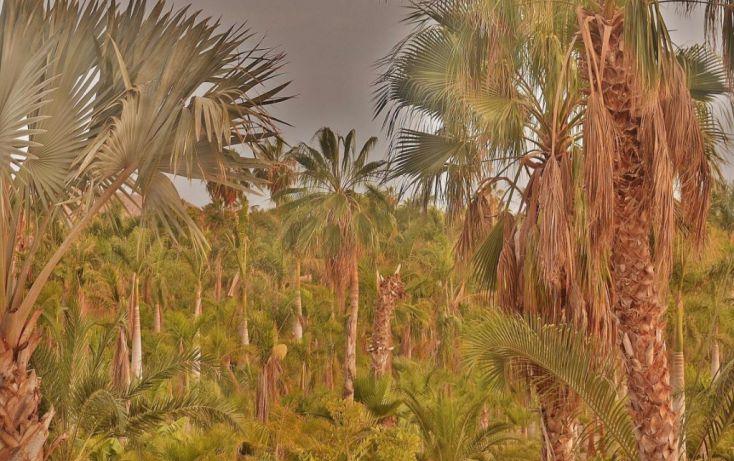 Foto de terreno habitacional en venta en, la esperanza, la paz, baja california sur, 1746782 no 04