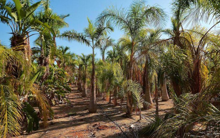 Foto de terreno habitacional en venta en, la esperanza, la paz, baja california sur, 1746782 no 05