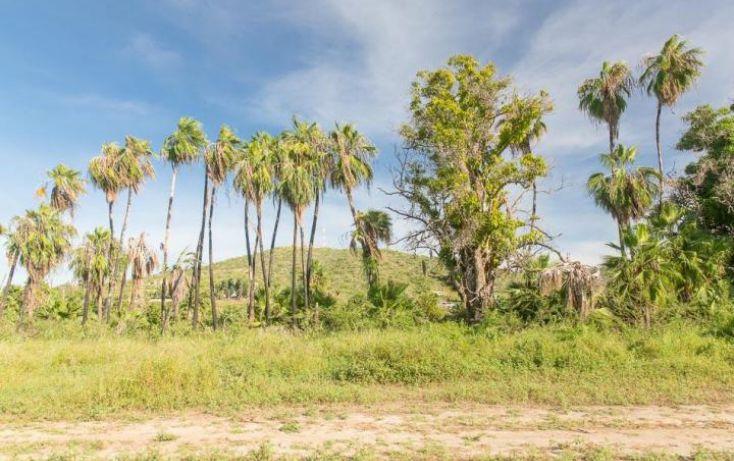 Foto de terreno habitacional en venta en, la esperanza, la paz, baja california sur, 1760902 no 10