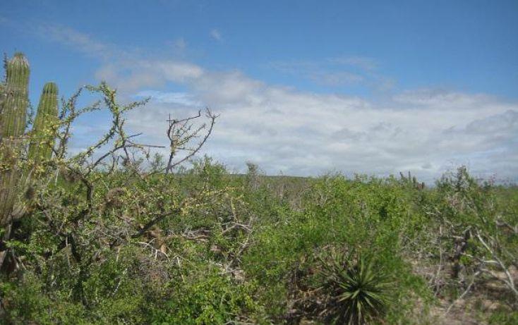 Foto de terreno habitacional en venta en, la esperanza, la paz, baja california sur, 1770440 no 10
