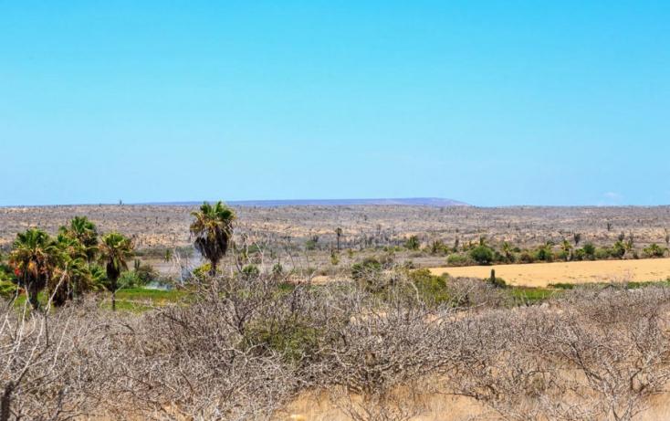 Foto de terreno habitacional en venta en, la esperanza, la paz, baja california sur, 948733 no 07