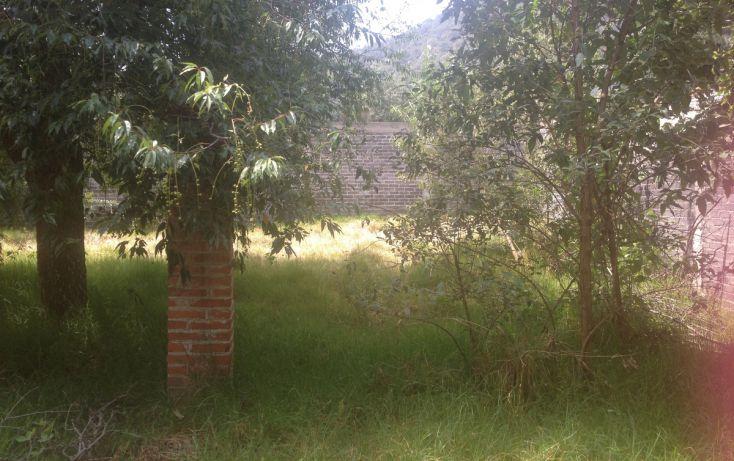 Foto de terreno habitacional en venta en, la esperanza, tlalmanalco, estado de méxico, 1940291 no 03