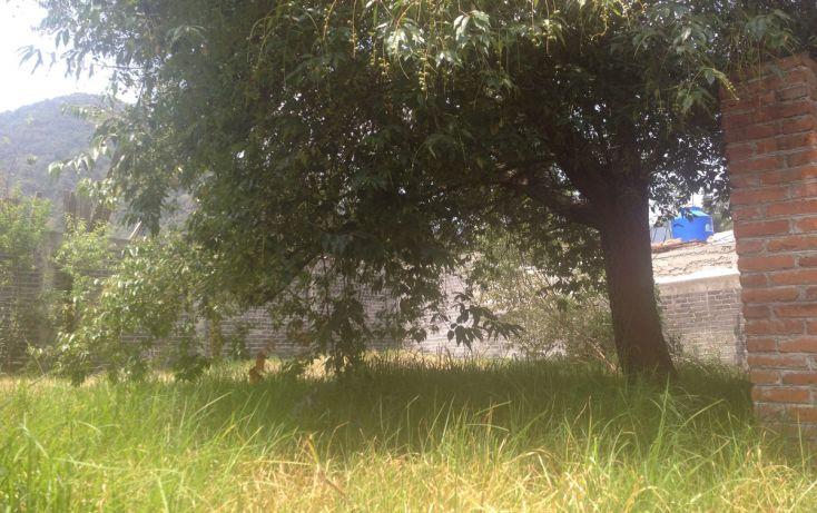 Foto de terreno habitacional en venta en, la esperanza, tlalmanalco, estado de méxico, 1940291 no 04