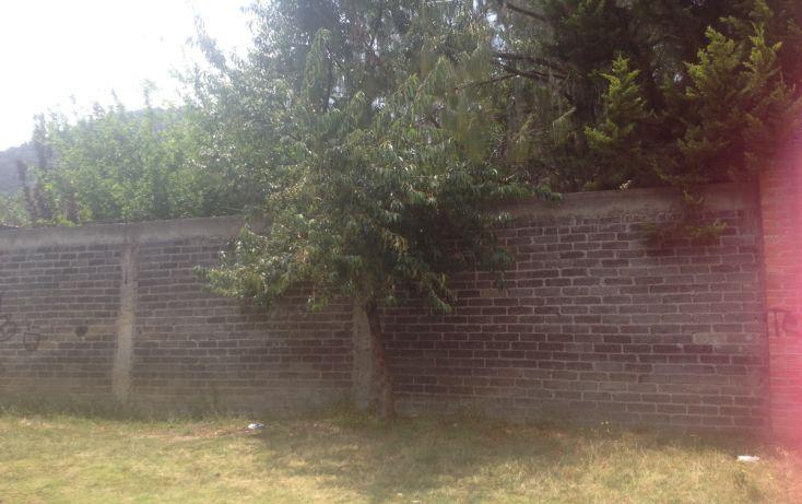Foto de terreno habitacional en venta en, la esperanza, tlalmanalco, estado de méxico, 1940297 no 02